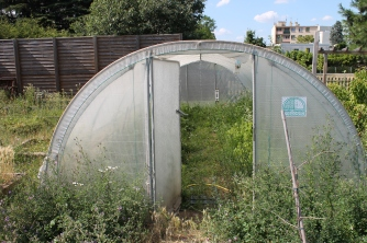 Serre du jardin en friches